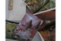 saga fantasy : Le Cronache dei cinque Regni